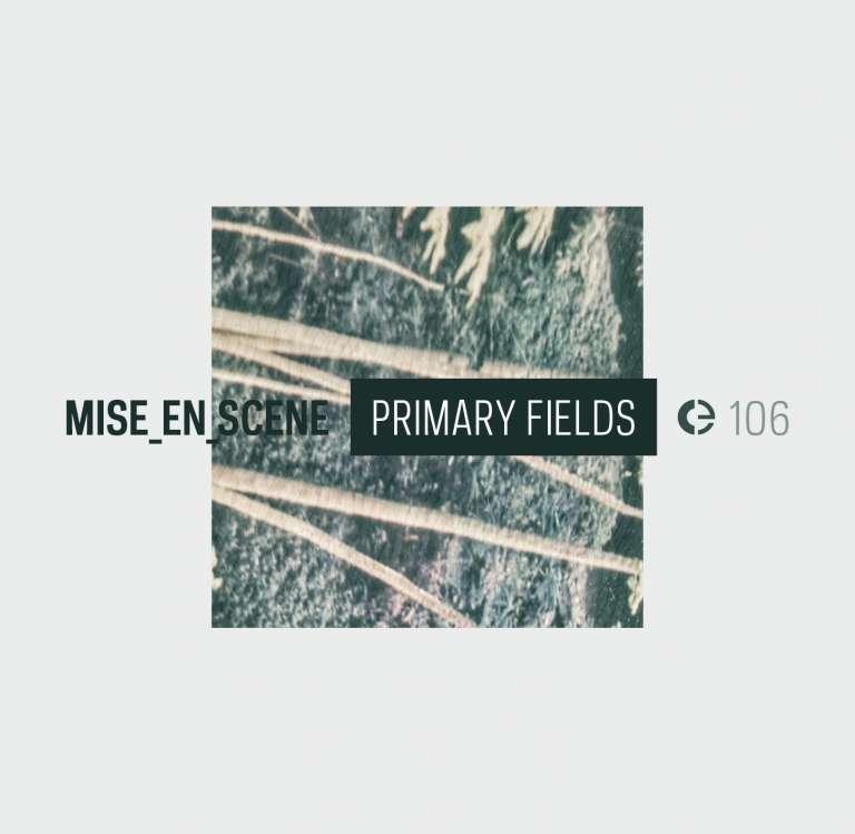 Primary Fields